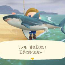 【雑談】『あつまれ どうぶつの森』でサメがうろちょろしてる島が安全で遊泳OKっておかしくね?
